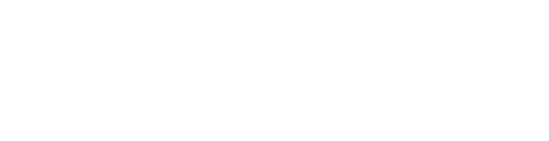 ShowBallot